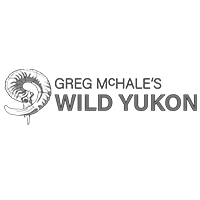 Watch Greg Mchale S Wild Yukon Online Carbontv